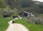 staufenhof7
