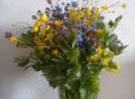 07 Blumen