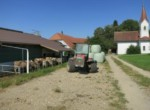 widmerhof12